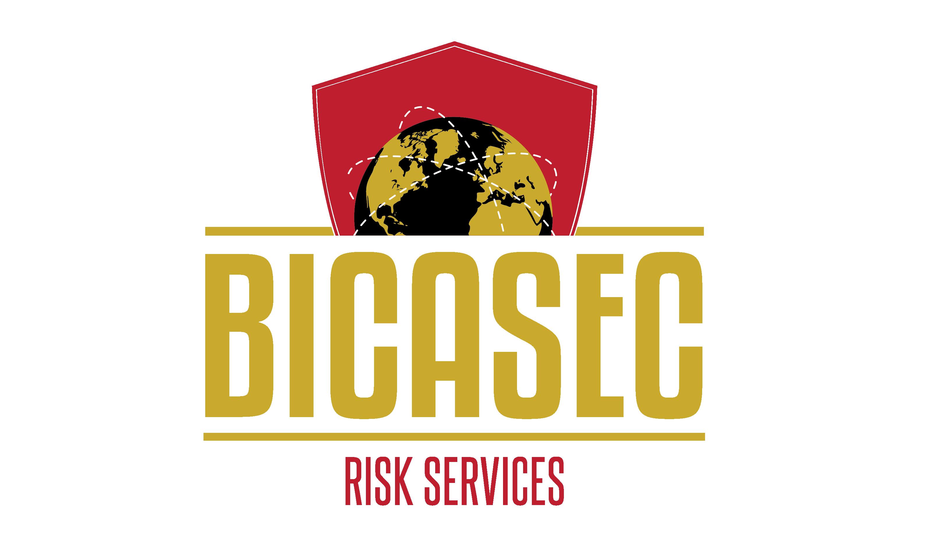 BICASEC